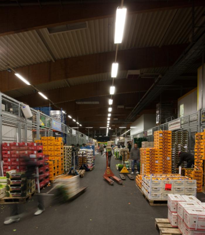 Großmarkt in Leipzig mit einer Gesamtfläche von rund 70.000 m²